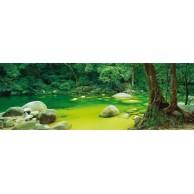 Puzzle 1000 el. MARK GRAY Mossman Gorge
