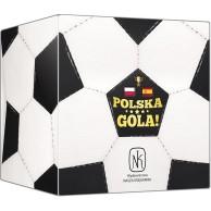 Polska, gola! (Polska - Hiszpania)
