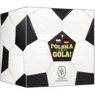 Polska, gola! (Polska - Niemcy)