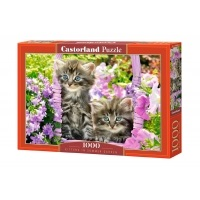Puzzle 1000 el. Kittens in Summer Garden