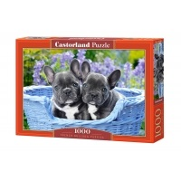 Puzzle 1000 el. French Bulldog Puppies