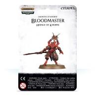 Warhammer Age of Sigmar: Bloodmaster, Herald of Khorne