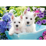 Puzzle 200 el. Westie Puppies