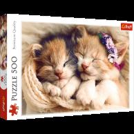 Puzzle 500 el. Śpiące kotki Zwierzęta Trefl