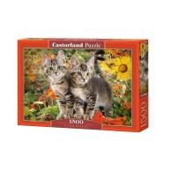 Puzzle 1500 el. Koci przyjaciele Zwierzęta Castorland