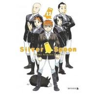 Silver Spoon - 12