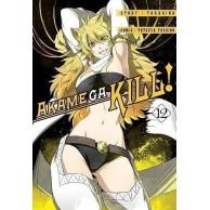 Zabójcza Akame (Akame ga Kill) - 12