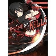 Zabójcza Akame (Akame ga Kill) - 13