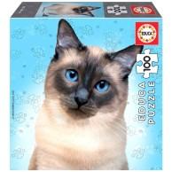 Puzzle 100 el. Koty - Syjamski Zwierzęta Educa