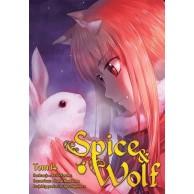 Spice & Wolf - 14